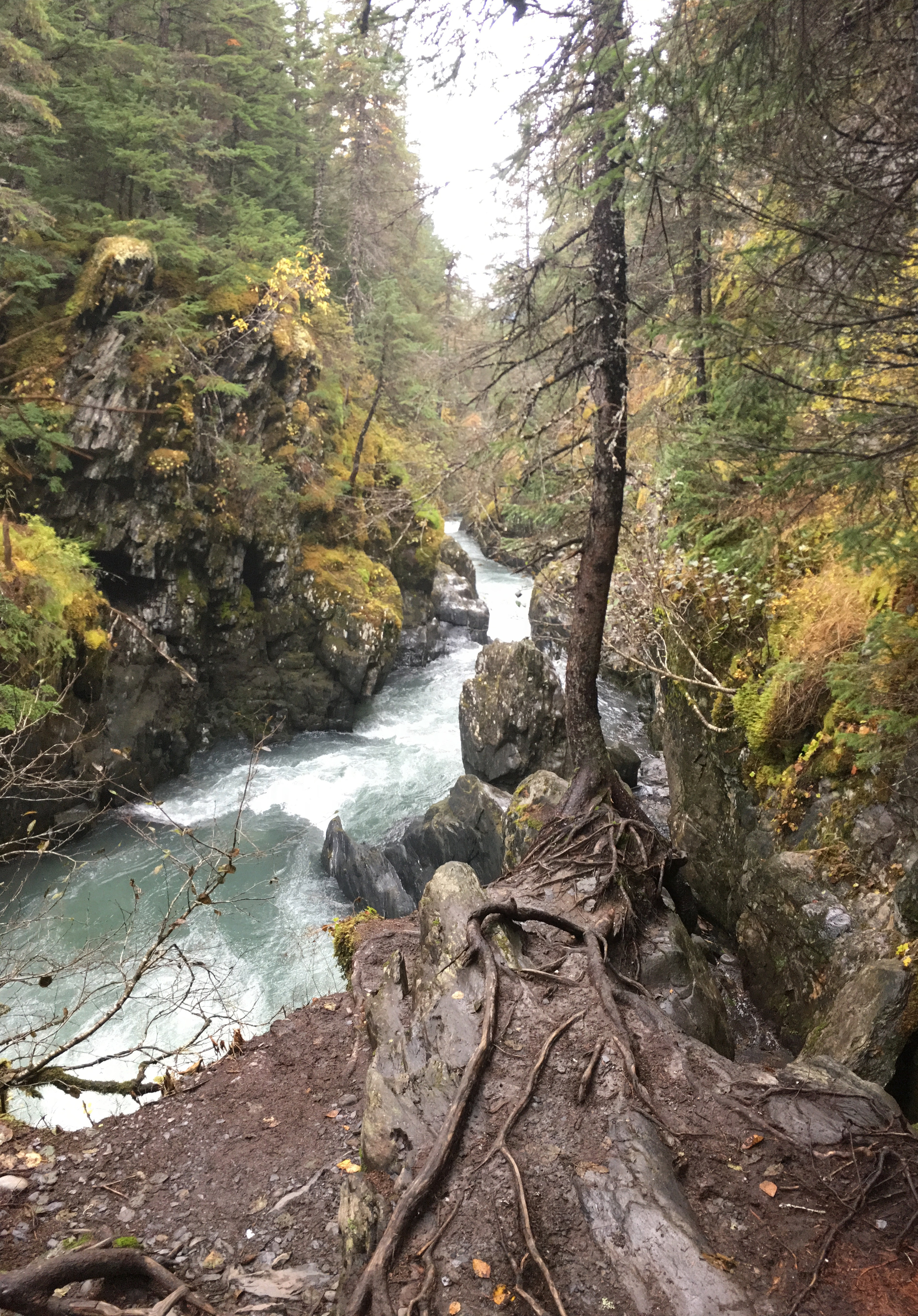 Winner Creek Gorge